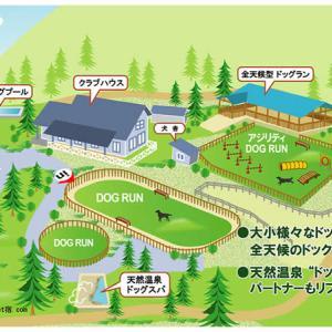 和歌山湯浅のパートナーズハウスゆあささんのドッグラン。