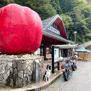 兵庫 道の駅巡りの旅。