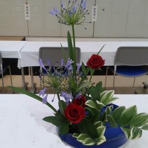 色彩盛花様式本位 アガパンサス