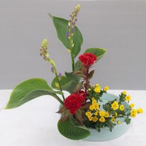 色彩盛花様式本位 擬宝珠
