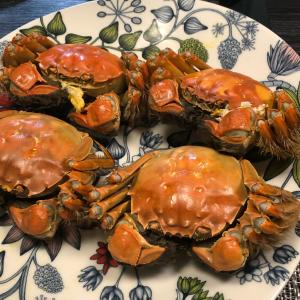 今年初上海蟹