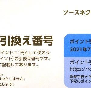 【株主優待】ソースネクスト(4344) ≪2021年3月権利≫