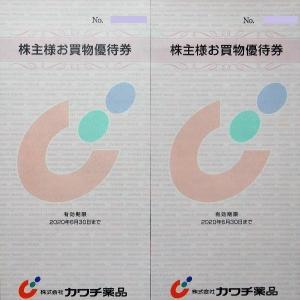 【株主優待】カワチ薬品(2664) ≪2019年3月権利≫