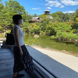 久々の京都。龍安寺と仁和寺、全然違う古刹を満喫。思ったより人は多かった