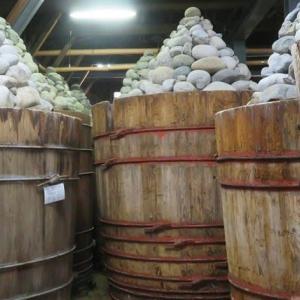 楽描き水彩画「木桶が並ぶ『八丁味噌』の製造現場=愛知県岡崎市へ」