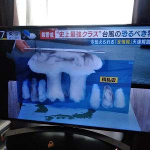 スーパー台風ニュースでもちきりです♪