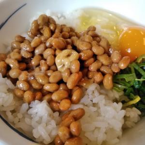 納豆食べて特訓中です♪