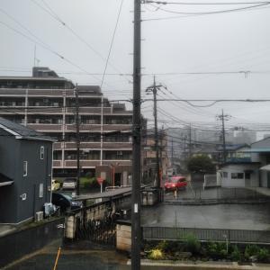 猛烈な雨の音が〜♪
