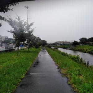 雨のモーニングタイム〜♪