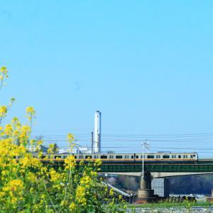 コロナの嫌なムードを吹っ飛ばせ、春空の多摩川で南武線と貨物列車を撮影する。