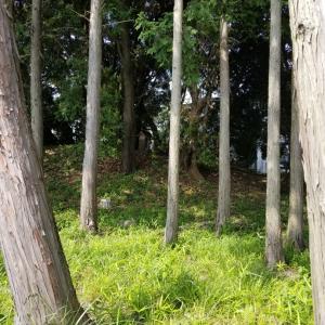 北小林古墳群 と 日吉廃寺