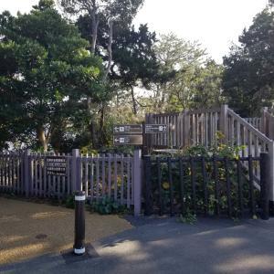 城ヶ崎海岸 と 砲台跡