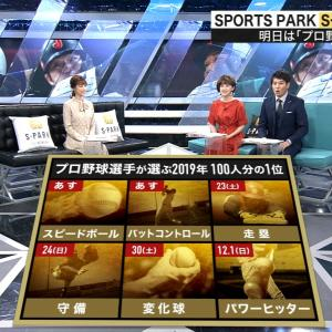 S-PARK『プロ野球100人分の1位』今年も放送予定、11月17日~12月1日で計5回6部門