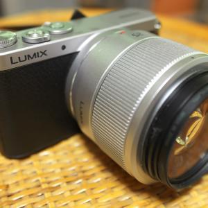 おさ虫のカメラ達