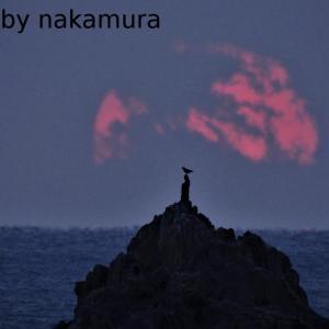 弥八島の日の出