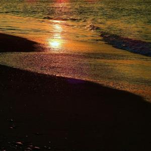ロングビーチの浜