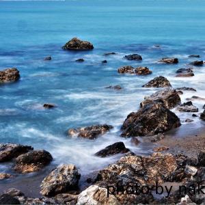 ロングビーチの磯