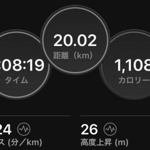 20km ジョグ or 130min LSD