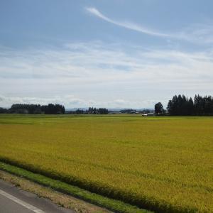 無料シャトルバスで行く大沢温泉の湯治屋はこんなですよ♪北海道&東日本パスで東北温泉巡りのひとり旅♪