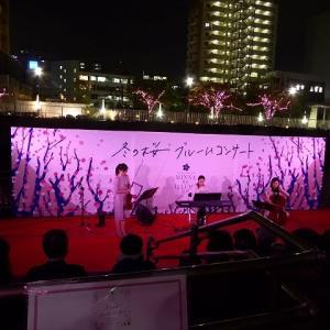「目黒川みんなのイルミネーション」散歩♪ちょっと早めに五反田~大崎間歩いてみた!