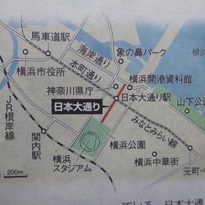 横浜の日本大通りの歴史♪ 去年の春は花であふれていた日本大通り♪