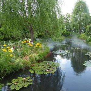 池袋西武の屋上ガーデン「睡蓮の庭」♪ 季節が変わると花も変わるのが楽しみ♪