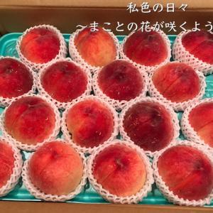 ふるさと納税【長野県喬木村】桃(あかつき)5kg