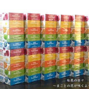 ふるさと納税【山口県和木町】スコッティティシューフラワーボックス 5箱×12セット