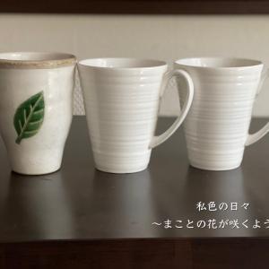 一日一捨♪ No.57【マグカップ・フリーカップ】