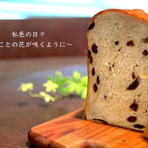 パン教室♡ピタ&レーズンツイスト&わらび餅♪