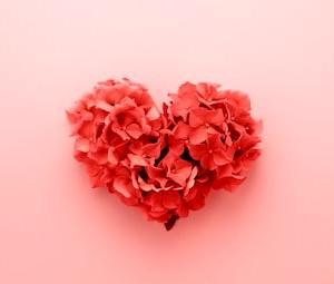 愛は行動をともなう
