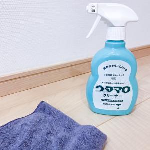 *床掃除*