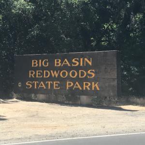 3回目のBig Basin