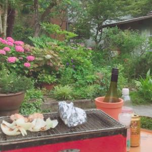 梅雨の合間の庭で