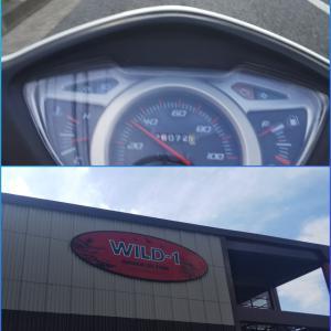 バイクでWILD‐1へ出かけてきました