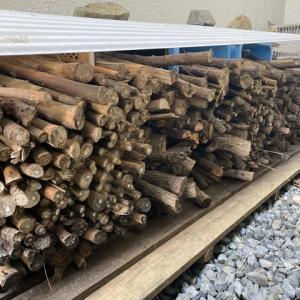 キャンプ用の薪 乾燥一年