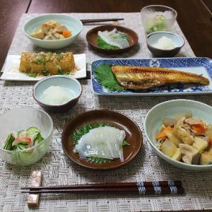 ザ・和食の晩ごはん
