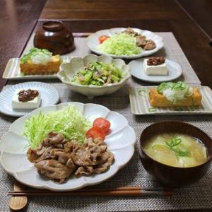 豚肉の生姜焼き&近所のお宅にモグラが!!
