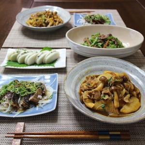 長芋の炒め物とゴーヤと国産牛とゴボウのしぐれ煮の和え物