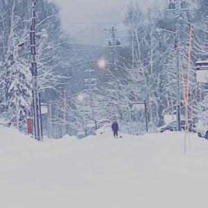 終日雪! 一の瀬クワット開始 day 2