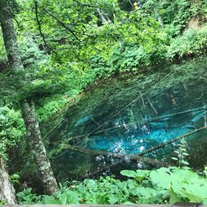 摩周湖→神の子池→桜の滝→小清水原生花園