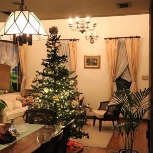 クリスマスツリーがやっと完成