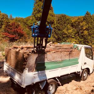 伐採木処理‼️