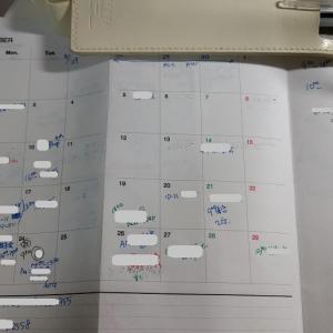 来年の手帳 シリーズその3 & New in の秋冬パンプス