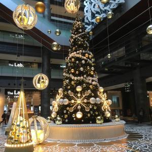 街はクリスマスの色に