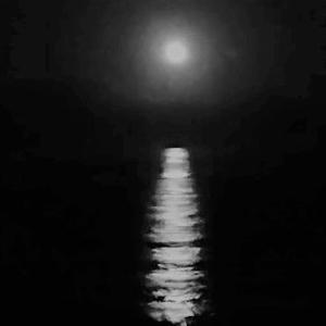 ただいま 20210725 ~満月と光の道~