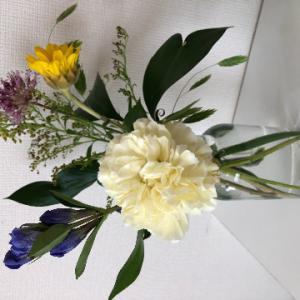 ◆続・お花のサブスクサービス、はじめてみました!~bloomee編~