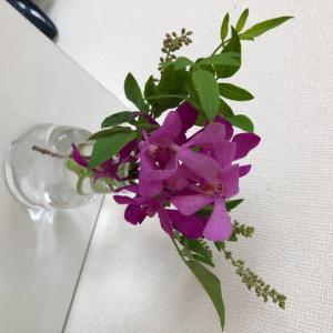 ◆お花のサブスクサービス、継続中!~bloomee編~