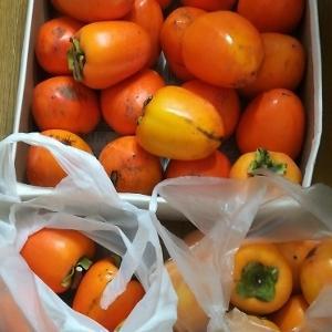 今年も干し柿♪