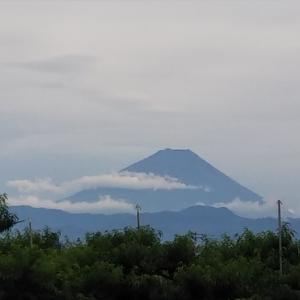 近況報告~梅雨が明けました!~